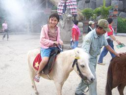 Taman Safari - Kuda Poni