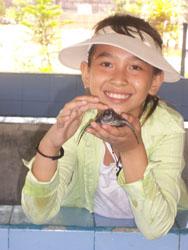Turtle Aya