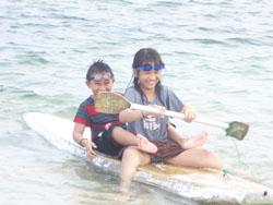 Turtle Beach Aya Kiya Kanoe