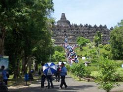 Borobudur - Candi 7